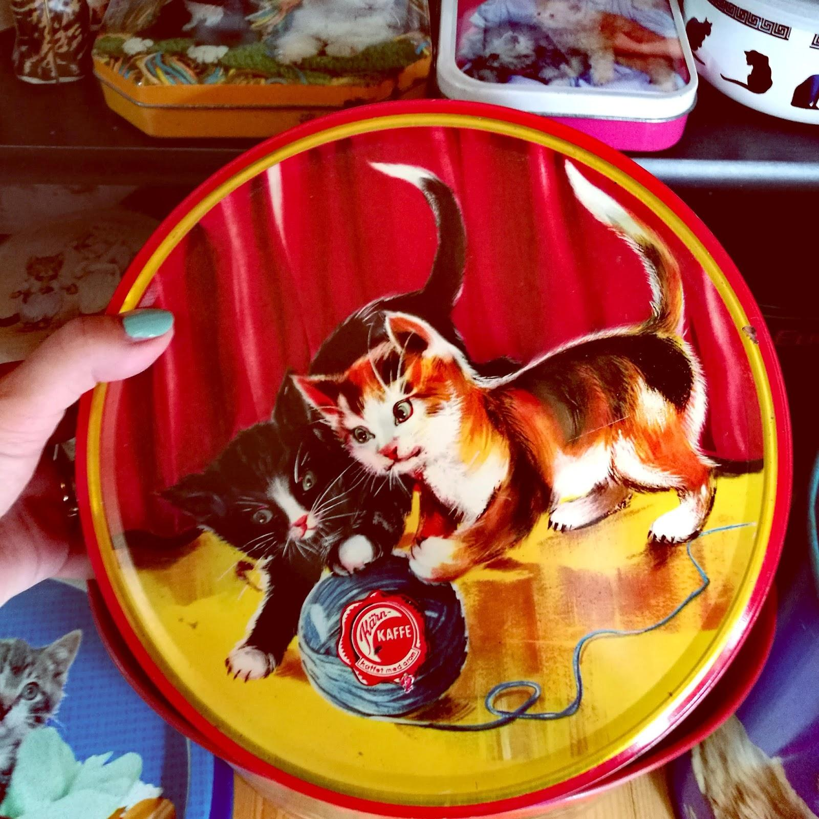 Kissamaista menoa